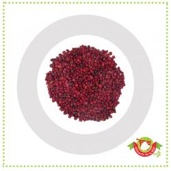 Kunde ( variété haricot)